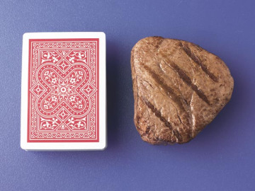 Steak and Cards Laser Resources
